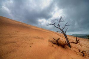 闇金への返済は砂漠のように無限に吸い取られるというイメージ