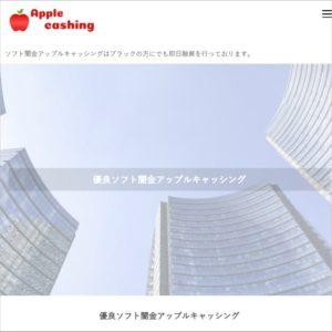 ソフト闇金アップルキャッシングのHP画像